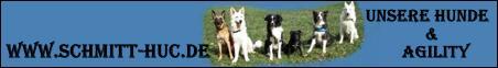 Private Homepage von Familie Schmitt und unseren Hunden. Interessantes über Agility und Obedience. Links über Hunde und Agility.